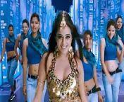 Anushka and priyamani from boolywod actress priyamani xxxbf video download